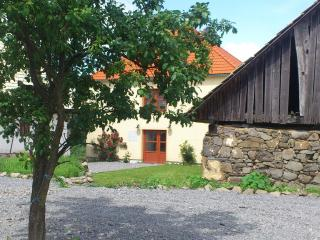 Beautiful House with Deck and Internet Access - Zvolen vacation rentals