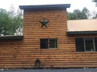 Beautiful Cabin with Deck and Internet Access - Olmstedville vacation rentals
