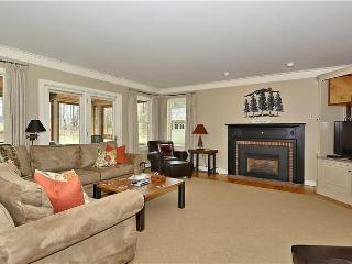 Gorgeous 4 bedroom House in Stowe with Deck - Stowe vacation rentals