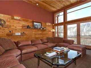 Beautiful Stowe House rental with Deck - Stowe vacation rentals