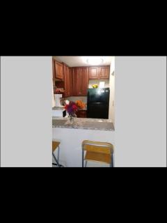 Cozy Adams Morgan Apartment - Washington DC vacation rentals