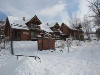 Comfortable 3 bedroom House in Kluszkowce - Kluszkowce vacation rentals