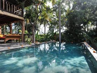 Wooden Villa in Rice Fields, 5min from Ubud Centre - Ubud vacation rentals