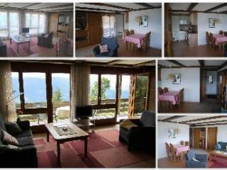 Nice Condo with Internet Access and Satellite Or Cable TV - Beatenberg vacation rentals