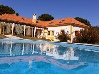 Villa 56 with private pool - Alcacer do Sal vacation rentals