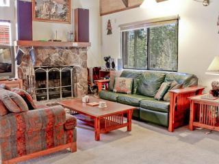 North Shore - Cozy Cabin  ~ RA130015 - Kings Beach vacation rentals