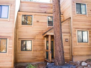 2 bedroom Apartment with Television in Northstar - Northstar vacation rentals