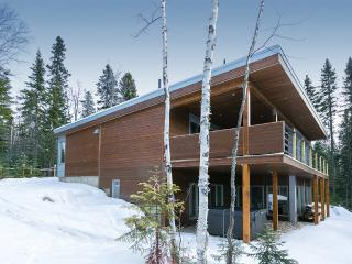Bright 4 bedroom Chalet in Petite-Riviere-Saint-Francois - Petite-Riviere-Saint-Francois vacation rentals