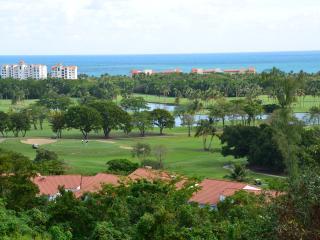 Villa Manolo at Wyndham Rio Mar Resort & Spa - Palmer vacation rentals