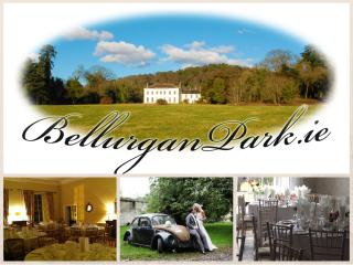 Bellurgan Park Log Cabins - Dundalk vacation rentals