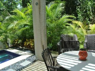 LUXURIOUS CALMING RETREAT- AKUMAL -TWO BEDROOM TOWNHOUSE w/ PRIVATE PLUNGE POOL - Akumal vacation rentals