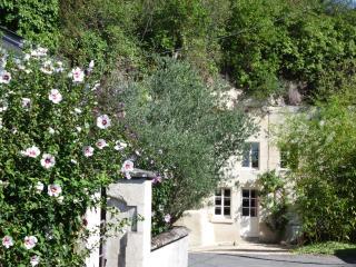 LE TROGLO pour un séjour atypique et original - Beaumont-en-Veron vacation rentals