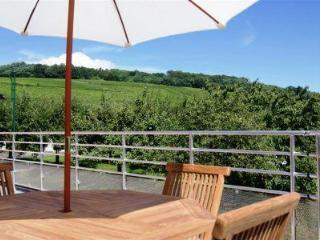 Loue Gîte NEUF 2 clés tout confort avec sauna - Obernai vacation rentals