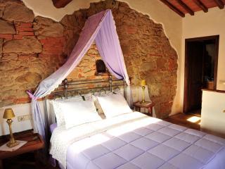 Lavanda – Ventena Vecchia Antico Frantoio - Moncioni vacation rentals