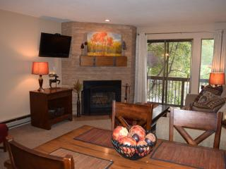 Park City Mountain Getaway - Snowcrest 213 - Park City vacation rentals