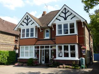 6 bedroom Guest house with Internet Access in Horley - Horley vacation rentals
