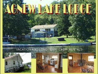 Comfortable Cottage with Television and Fireplace - Sudbury vacation rentals