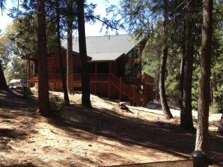 4 bedroom House with Internet Access in Pioneer - Pioneer vacation rentals