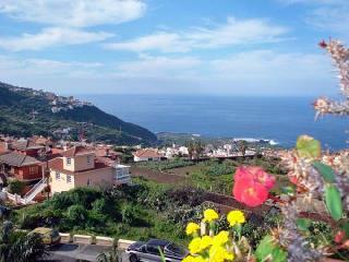Appartments Los Faroles - Penthouse Canarias mit Terrasse und Aussengrill - Icod de los Vinos vacation rentals