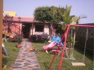 Finca Miguel - San Juan de la Rambla vacation rentals