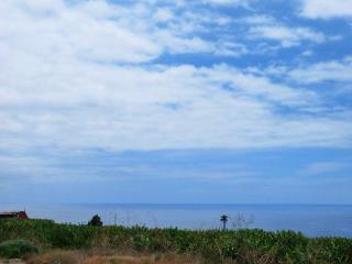 Appartment Mava - Tazacorte vacation rentals