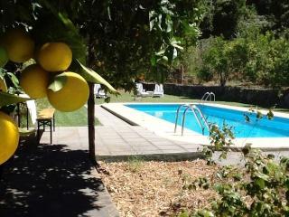 Finca am Wald - La Orotava vacation rentals