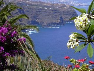 Grosses Anwesen am Meer - Familienbungalow - La Matanza de Acentejo vacation rentals