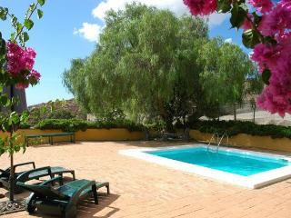 Landhaus des Frühlings - Telde vacation rentals