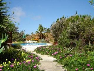 Finca Garachico Casa 1 - Icod de los Vinos vacation rentals