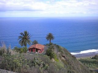 Finca Calma - Casa Kanarische Palme - San Juan de la Rambla vacation rentals