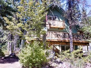 Cozy, dog-friendly mountain chalet with private hot tub! - Government Camp vacation rentals