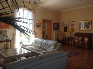 Casa di musicista con terrazze panoramiche sull'Ar - Pontedera vacation rentals