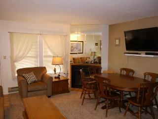 Great 1 bedroom Condo for 2 to 4 people - Eden vacation rentals