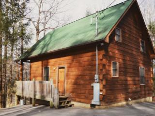 Naughty by Nature in the Pigeon Forge Area - Pigeon Forge vacation rentals