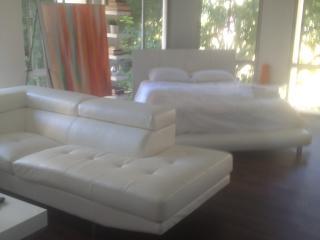 Luxury Modern Studio Loft Downtown Los Angeles - Los Angeles vacation rentals
