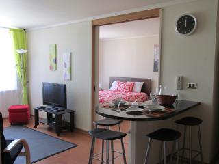 Discount! Lastarria Metro Bellas Artes - Santiago vacation rentals