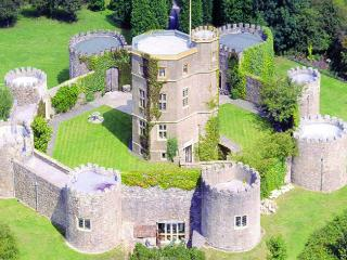 C17th Castle - Clevedon vacation rentals