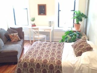 Massive & Neat on Prospect Park 2BD sleeps 6 - Brooklyn vacation rentals