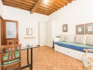 Lovely Condo with A/C and Television - Rome vacation rentals