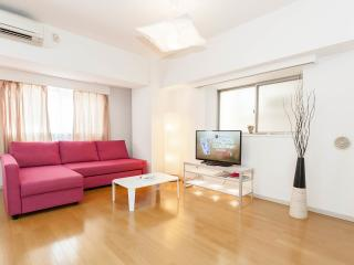 Ueno Park! 40 Minutes from Airports! FREE WIFI! - Taito vacation rentals