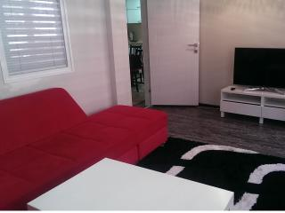 Central 2 Bedroom Apartment near sea,metro - Istanbul vacation rentals