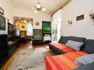Apartment Center (parking, terrace, big rooms) - Zagreb vacation rentals