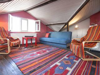 TAKSIM 15 people! FULL VILLA/HOUSE - Istanbul vacation rentals