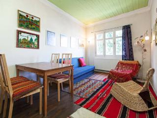 TAKSIM 8 persons! OLD wooden house - Istanbul vacation rentals