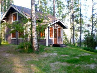 2 bedroom Cottage with Internet Access in Kesälahti - Kesälahti vacation rentals