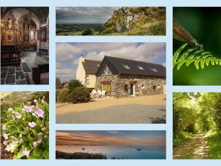 Gîte nature entre terre et mer en Bretagne . - Le Cloitre-Saint-Thegonnec vacation rentals