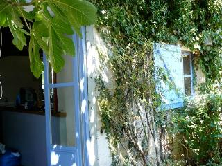 Les Mirabelles is a 6 Bedroom Farmhouse - Poitiers vacation rentals
