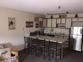 Winter Park CO from $65.00 per Ski Season night !! - Winter Park vacation rentals