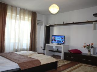 Unirii Luxury Studio,Bucharest city center! - Bucharest vacation rentals
