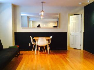 BU+Longwood+MIT bus 1bdrm+sofa bed - Brookline vacation rentals
